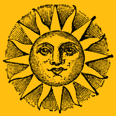 summer institutes icon sun