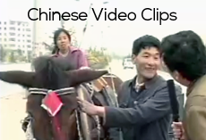 Chinese language video clips for classroom use (video version)
